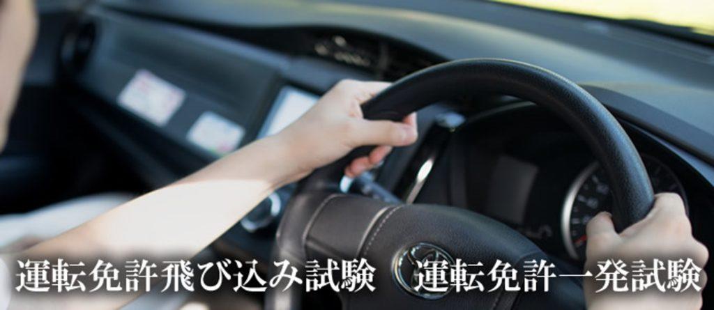 運転人 女性 ハンドル
